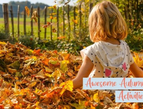 Awesome Autumn Activities for you to get involved in